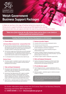 Welsh Government Business Support Packages