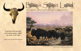 Bison Spirit Land - Aboriginal Culture and History in Calgary Parks