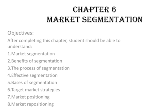 CHAPTER 6 MARKET SEGMENTATION