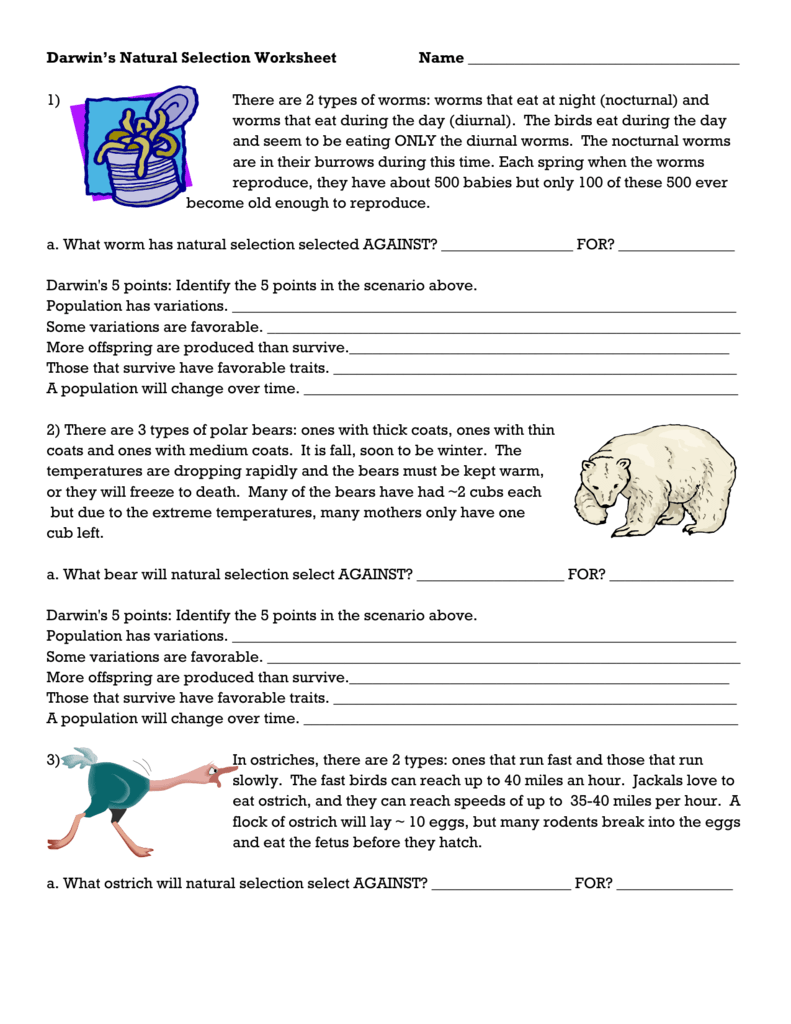 Darwin's Natural Selection Worksheet