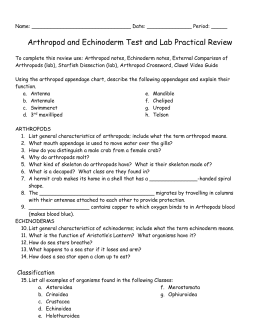 Arthropod and Echinoderm Test and Lab Practical Review