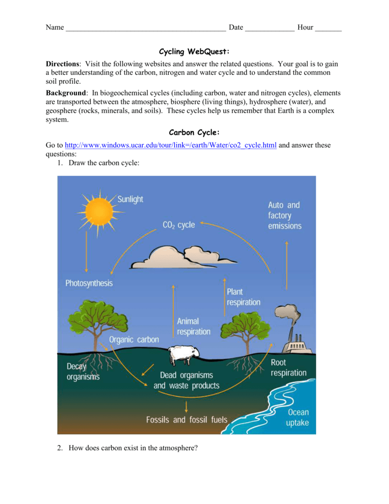 All Grade Worksheets The Carbon Cycle Worksheet All Grade – Carbon Cycle Worksheet
