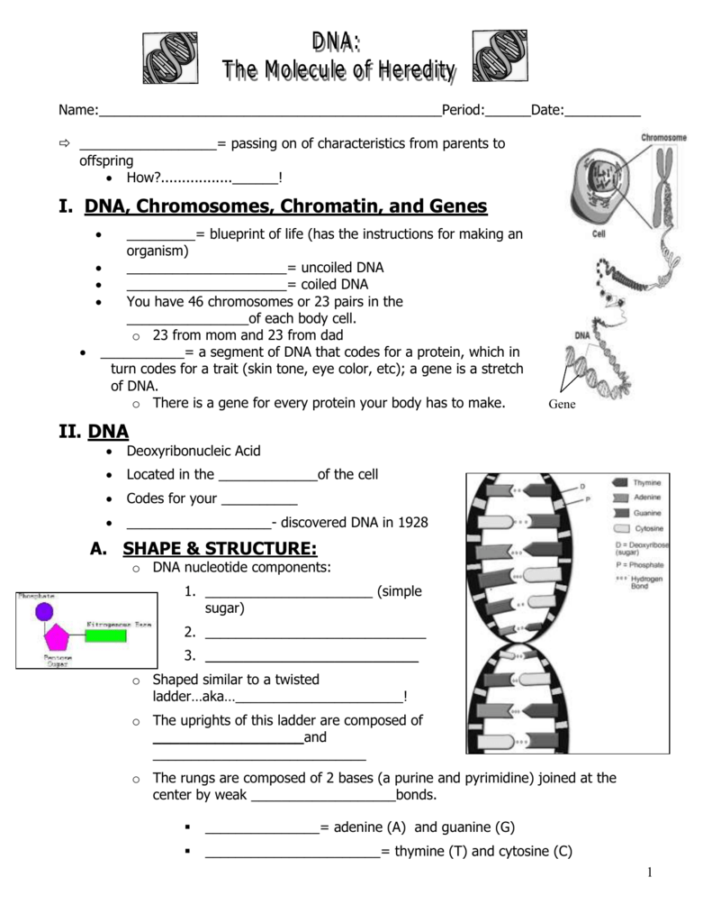Dna notes malvernweather