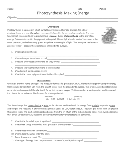 Cellular respiration breaking down energy worksheet answers