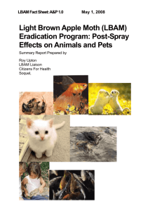 (LBAM) Eradication Program: Post Spray Effects on Animals and Pets