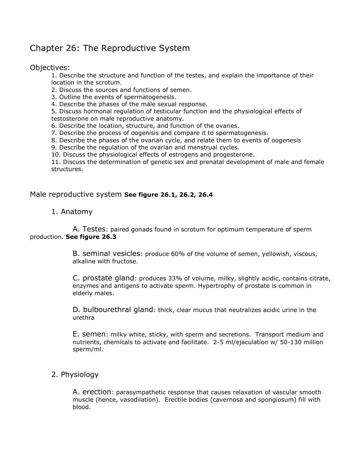 Ungewöhnlich Anatomy And Physiology Chapter 26 Zeitgenössisch ...