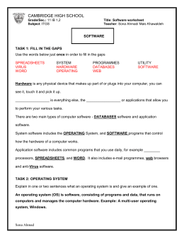 Software+worksheet1 - CHS-G11IB-ITGS