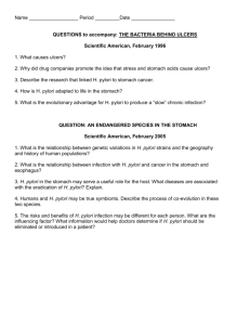 Bact behind ulcersSci Am 1996 Questions