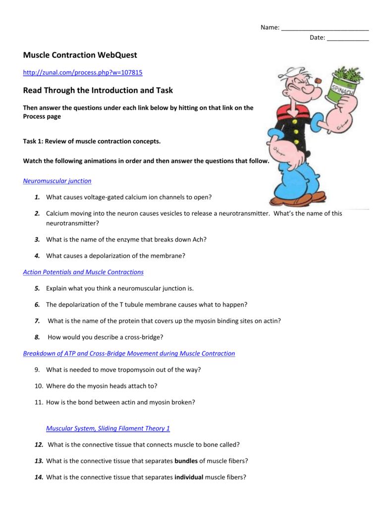 worksheet. Muscle Contraction Worksheet. Carlos Lomas Worksheet For ...