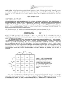 Ch  10 Study Guide Answer Key