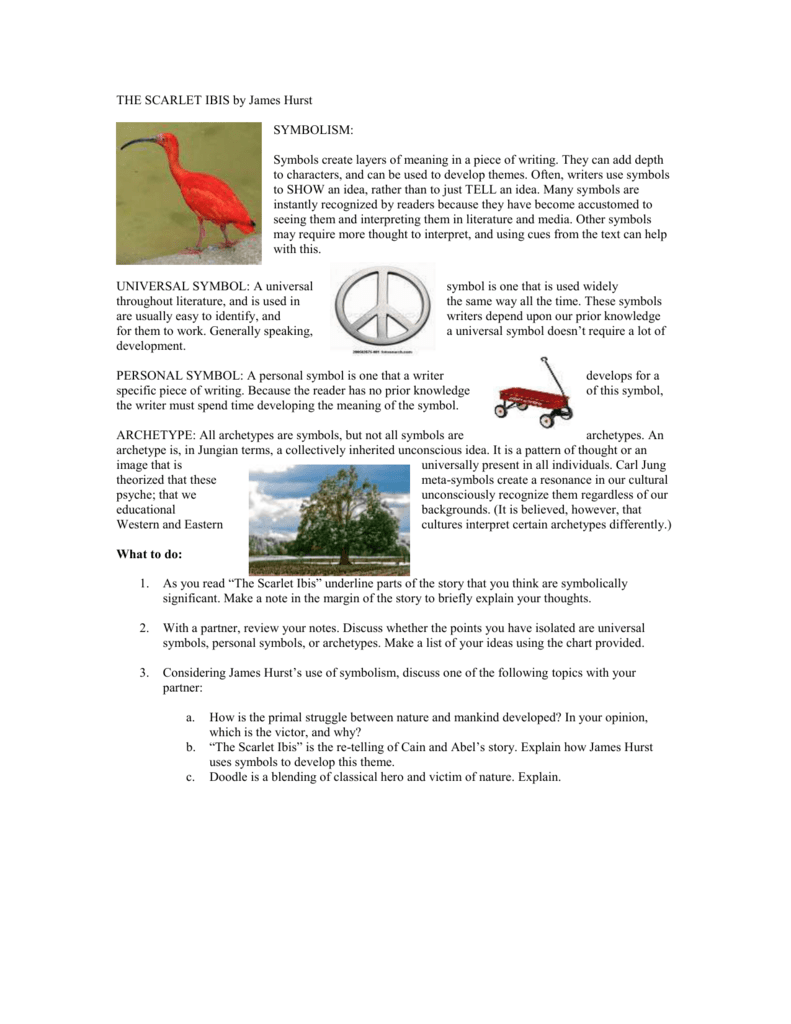 worksheet The Scarlet Ibis Worksheet 008972556 1 dc88da209a99944cd9d21c8ee84fb624 png