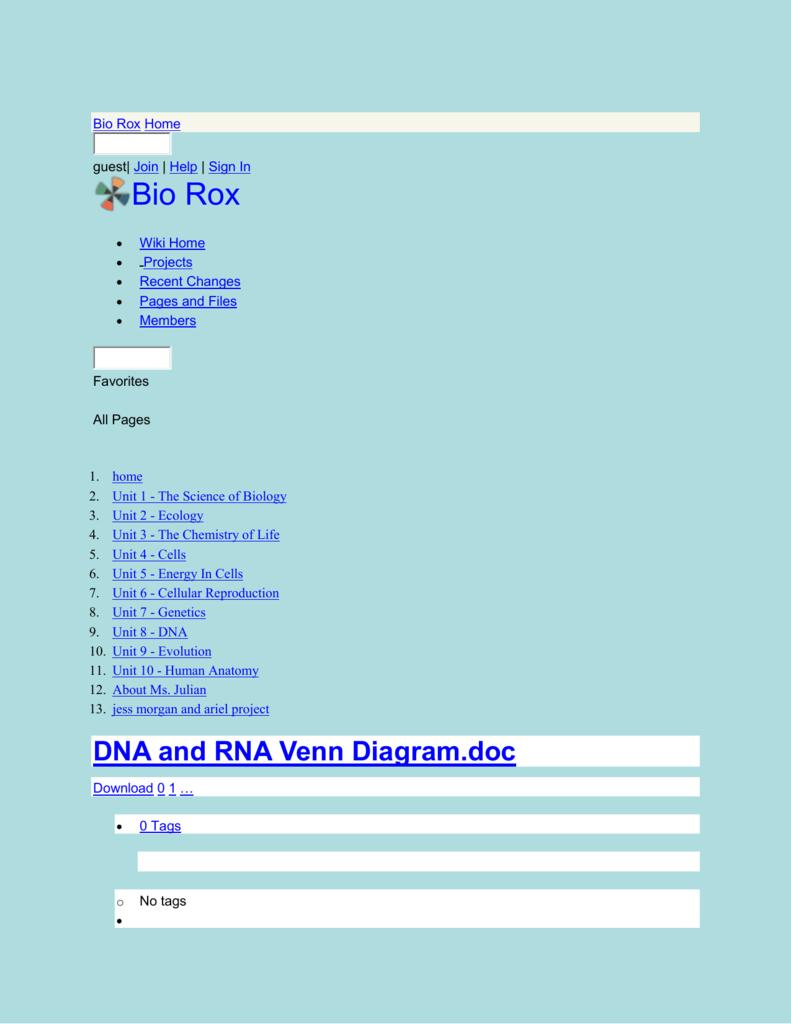 Bio rox dna and rna venn diagram ccuart Choice Image