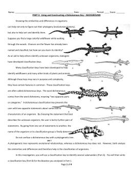 Taxonomy Ws 2 Dichotomous Key Worksheet