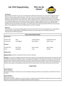 studylib.net - Essays, homework help, flashcards, research ...