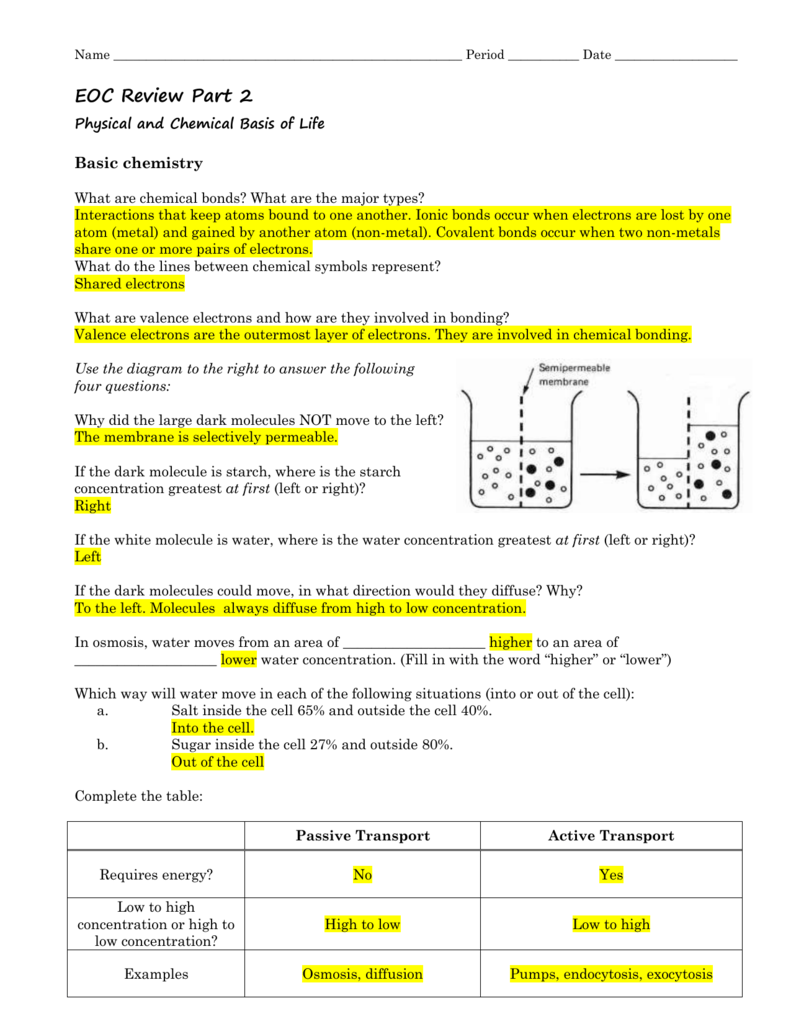 Eoc Review Part 2 Physical And Chemical Basis Of Life Basic