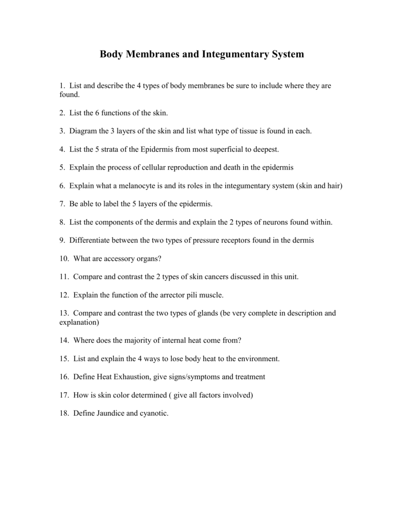 worksheet Skin And Body Membranes Worksheet Answers 009013817 1 62d94a5dcbe314ef26be70be8979a009 png