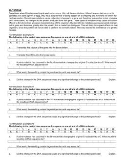 mutations worksheet answer key mutations worksheet