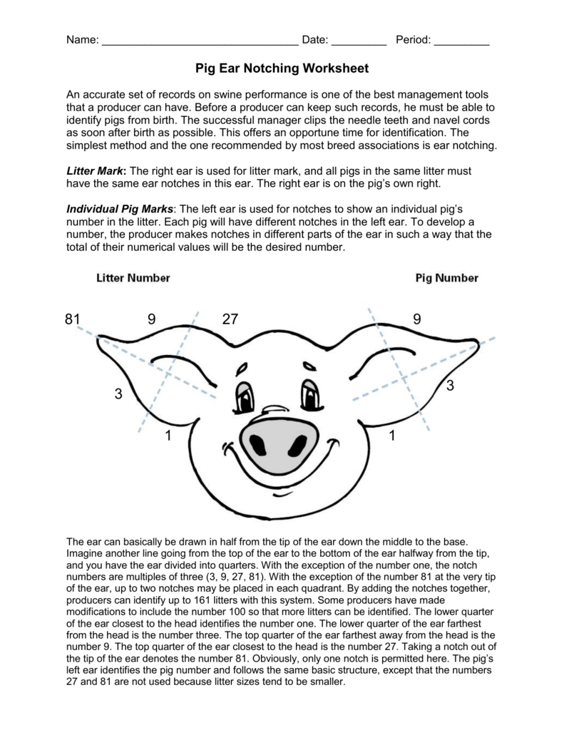 Pig notching worksheet sonoma valley high school robcynllc Gallery