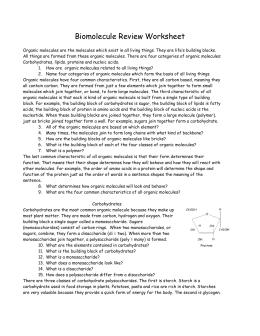 Worksheets Biomolecules Worksheet biomolecule review worksheet biomoleculereviewworksheet