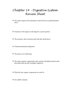 Chapter 14 – Digestive System Review Sheet