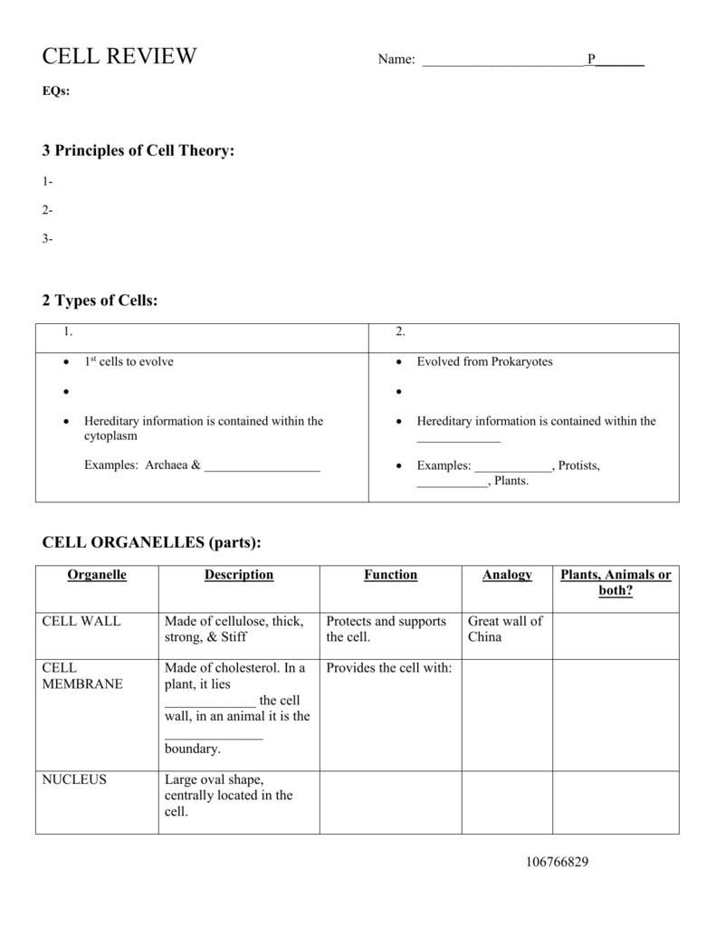 Cell Organelle Fib Notes Cell Organelles Worksheet