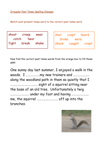 Irregular Past Tense Spelling Changes