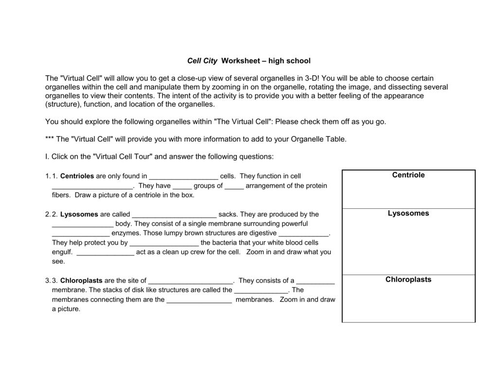 The Virtual Cell Worksheet Answer - Nidecmege