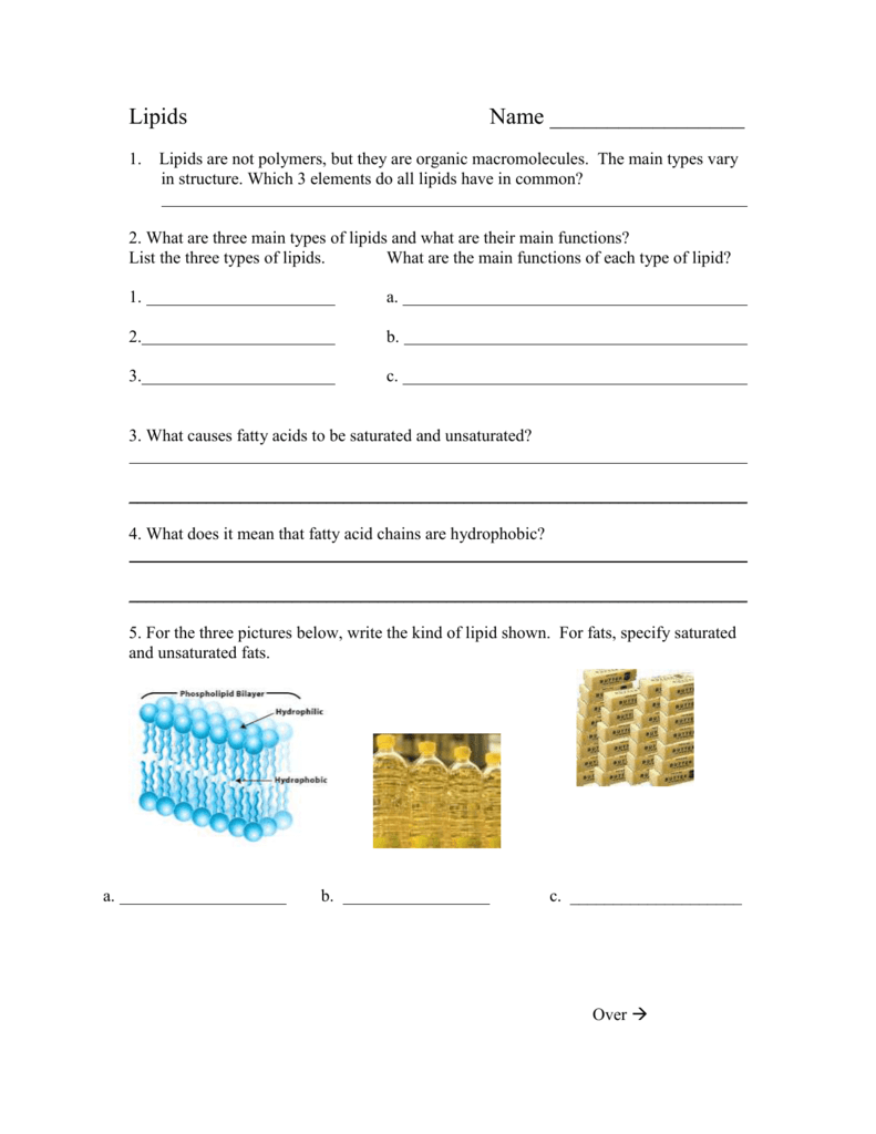 Lipid Worksheet – Organic Macromolecules Worksheet