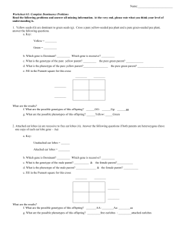 Genetics Practice Problems Worksheet