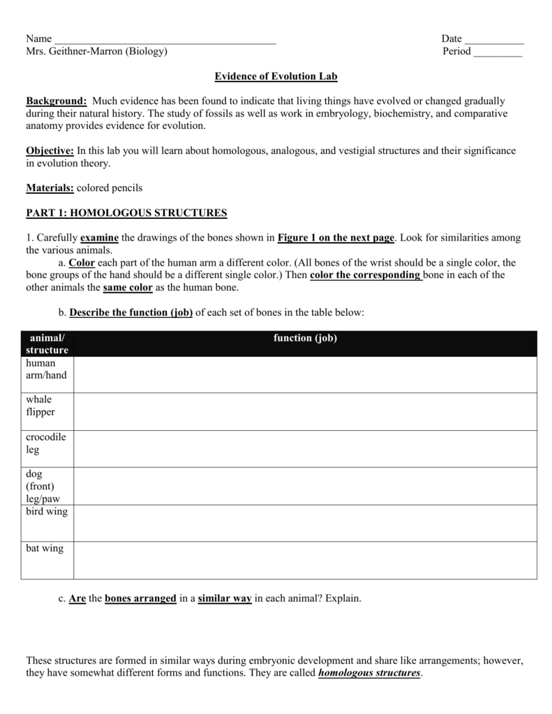 worksheet biochemical evidence for evolution worksheet evidence of evolution - Evolution Worksheet