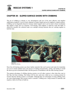 chapter 30 - sloped surface shore with cribbing