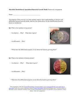 bacterial growth essay Environmental effects on bacterial growth - lab report example nobody  the  central question for the experiment was: do environmental factors limit the growth  of bacteria due to the  5 pages (1250 words)essay microbiology using this.