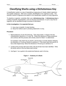 Classifying Sharks using a Dichotomus Key