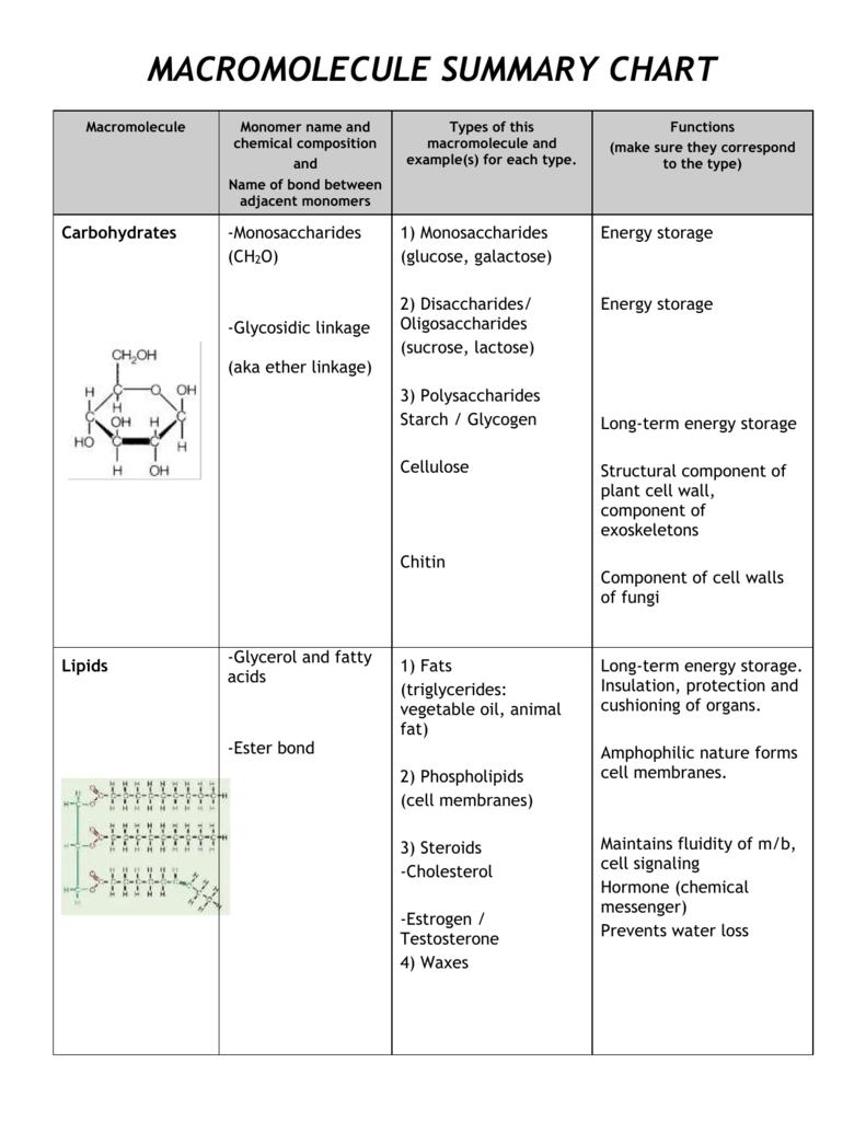 macromolecule summary chart