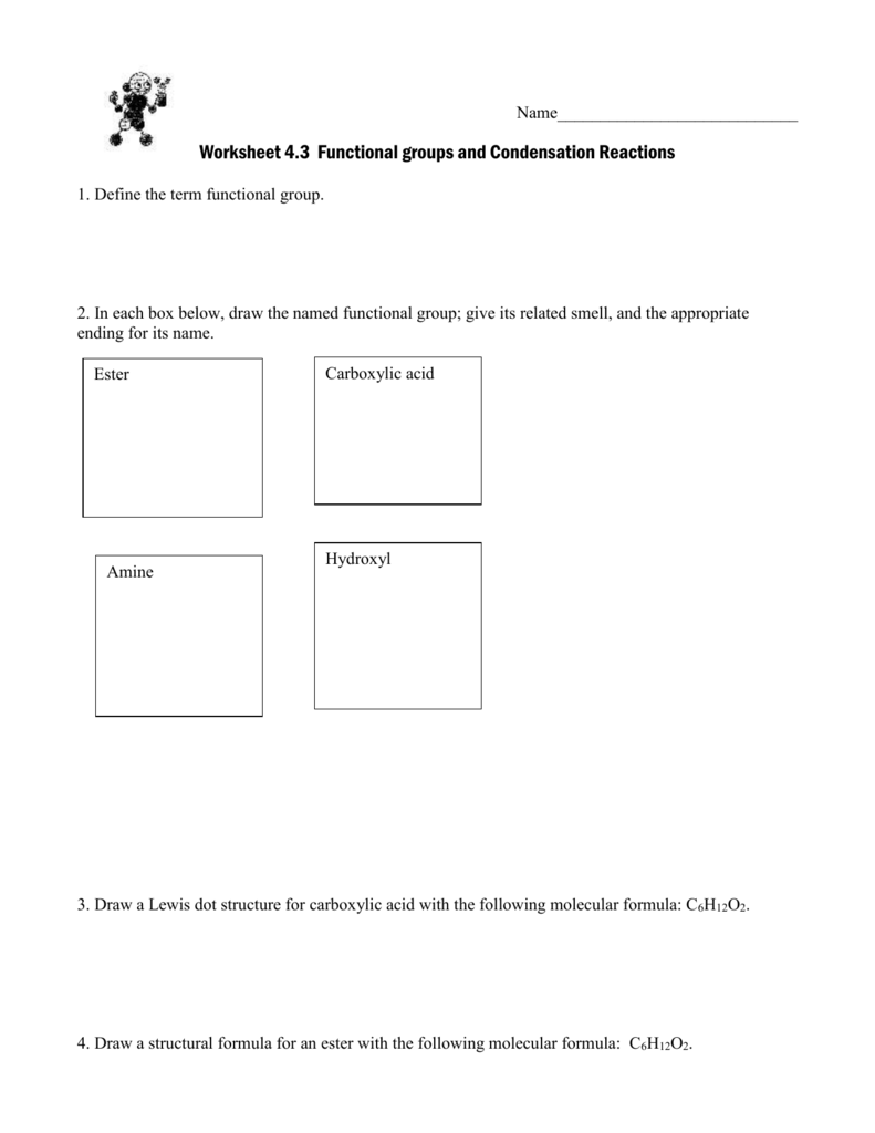 Worksheet 43 Functional Groups And