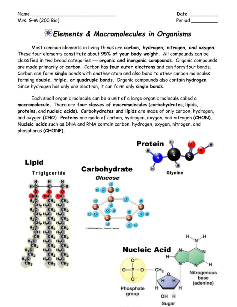 Nucleic Acids Mrs Gm Biology 200