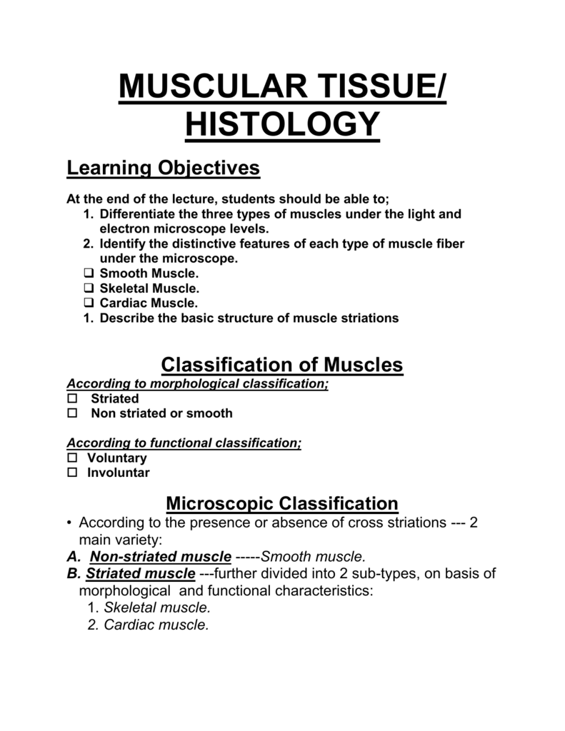 Histology Muscular Tissue By Dr Nand Lal Dhomeja