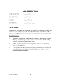 Internal Auditor Job Description