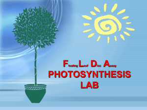 Photosynthesis FLDA Experiment and Pre