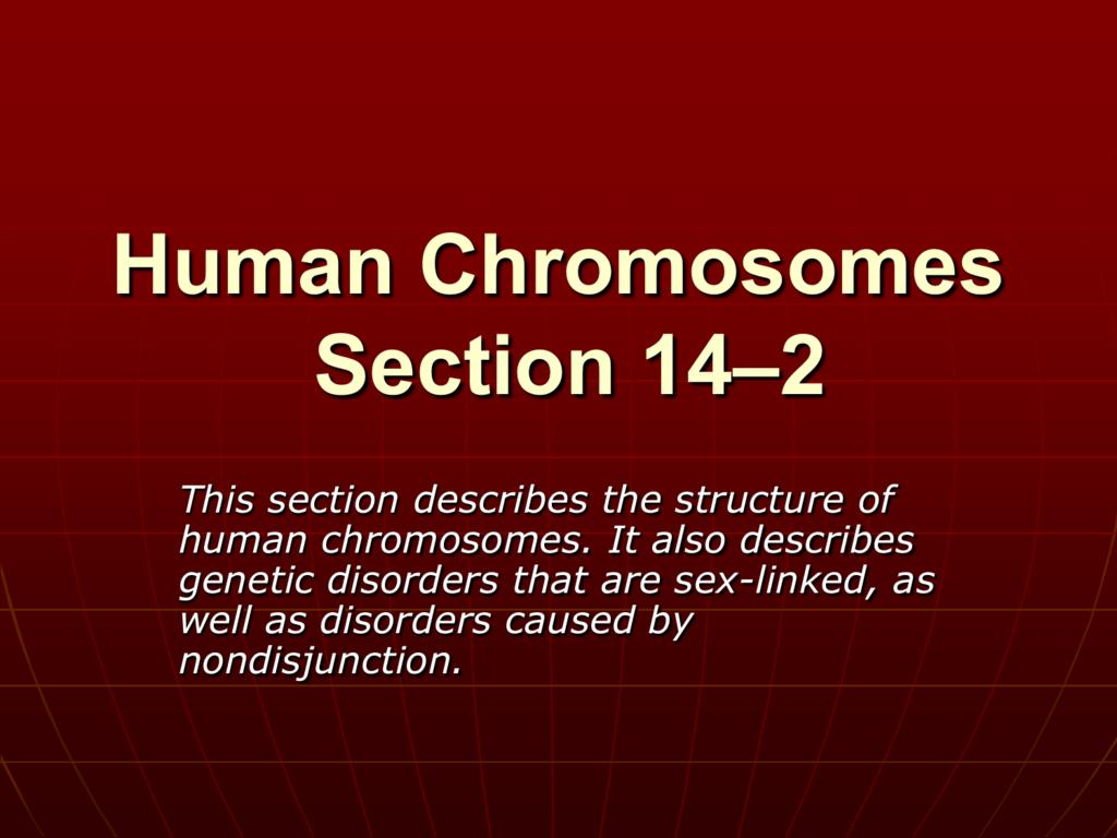worksheet Section 14 2 Human Chromosomes Worksheet Answers human chromosomes section