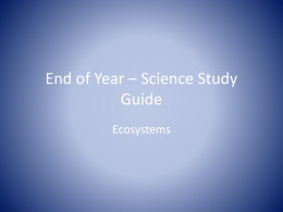 End of Year * Science Study Guide