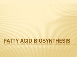 21_fatty-acid-biosynthesis