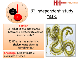 B1 independent learning task