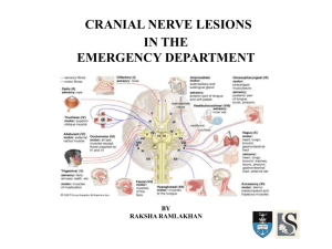 about cranial nerves (27 Jan 2010)