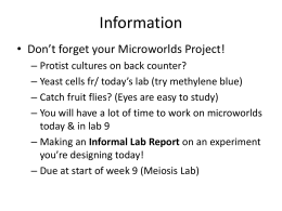 carbohydrate analysis lab report