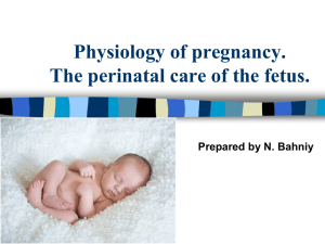Anatomy & Physiology of Pregnancy