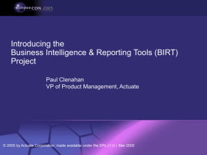 Who is BIRT? Solving Your Data Visualization Needs with