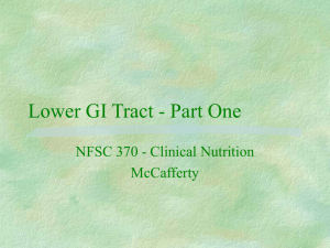 Lower GI Tract