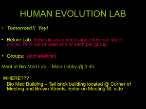 Lecture 3a Hominid Evolution 1