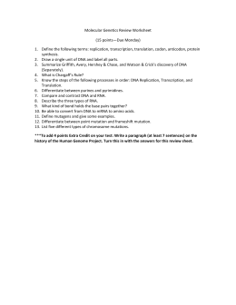 Molecular Genetics Review Worksheet (15 points—Due Monday